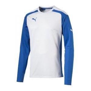 puma-speed-jersey-trikot-langarm-langarmtrikot-longsleeve-teamwear-kids-kinder-children-weiss-blau-f13-701909.jpg