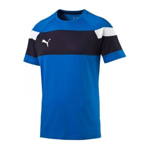 puma-spirit-2-leisure-t-shirt-kurzarmshirt-teamsport-men-herren-blau-weiss-f02-654659.jpg