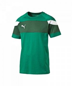 puma-spirit-2-leisure-t-shirt-kurzarmshirt-teamsport-men-herren-gruen-weiss-f05-654659.jpg