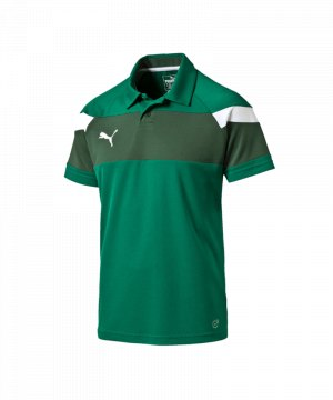 puma-spirit-2-poloshirt-kurzarmshirt-polo-teamsport-vereine-men-herren-gruen-weiss-f05-654660.jpg