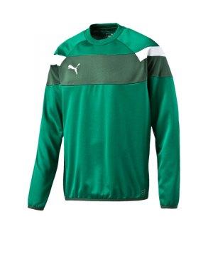 puma-spirit-2-training-sweatshirt-teamsport-vereine-mannschaft-men-herren-gruen-f05-654656.jpg