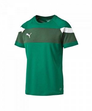 puma-spirit-2-trainingsshirt-kurzarmshirt-teamsport-vereine-men-herren-gruen-weiss-f05-654655.jpg