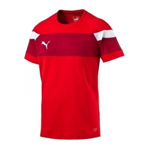 puma-spirit-2-trainingsshirt-kurzarmshirt-teamsport-vereine-men-herren-rot-weiss-f01-654655.jpg