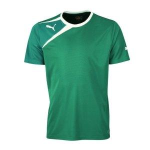 puma-spirit-tee-t-shirt-f49-gruen-weiss-653589.jpg
