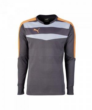 puma-stadium-gk-shirt-torwarttrikot-goalkeeper-torhueter-langarmtrikot-men-herren-maenner-grau-f33-702089.jpg