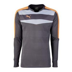 puma-stadium-gk-shirt-torwarttrikot-goalkeeper-torhueter-langarmtrikot-men-herren-maenner-grau-f35-702089.jpg