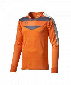 puma-stadium-gk-shirt-torwarttrikot-goalkeeper-torhueter-langarmtrikot-men-herren-maenner-orange-f36-702089.jpg