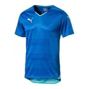 puma-stadium-shortsleeved-shirt-trikot-herren-maenner-man-kurzarmtrikot-kurzarm-herrenshirt-teamwear-blau-f02-702064.jpg