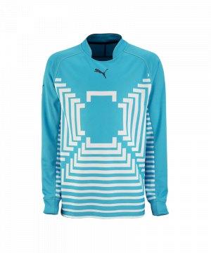 puma-statement-gk-shirt-torwarttrikot-maenner-man-torwart-torhueter-blau-701917.jpg