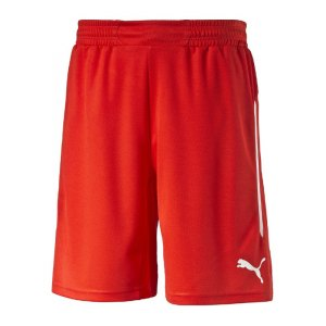 puma-statement-shorts-hose-kurz-matchshort-herrenshort-innenslip-innenhose-teamwear-men-herren-maenner-rot-f01-701911.jpg