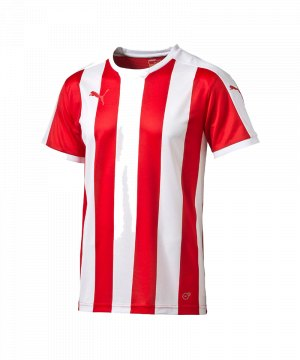 puma-striped-trikot-kurzarm-rot-weiss-f01-shortsleeve-shirt-jersey-matchwear-spiel-training-teamsport-702068.jpg