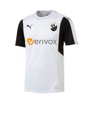 puma-sv-sandhausen-trikot-away-kids-2017-2018-kindertrikot-auswaertstrikot-jersey-fussballbekleidung-awayjersey-100095.jpg