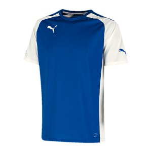puma-trikot-speed-jersey-kids-kinder-spieltrikot-shortsleeve-f02-blau-weiss-701906.jpg