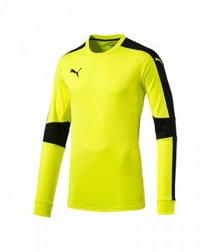 puma-triumphant-gk-shirt-torwarttrikot-gelb-f53-torwart-goalkeeper-longsleeve-langarm-herren-men-maenner-702195.jpg