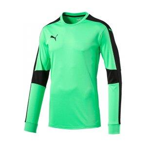puma-triumphant-gk-shirt-torwarttrikot-gruen-f50-shirt-jersey-torspieler-teamwear-mannschaft-702195.jpg