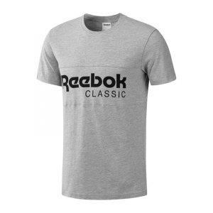reebok-f-archive-stripe-tee-t-shirt-grau-shirt-kurzarm-shortsleeve-herren-men-maenner-bk3838.jpg