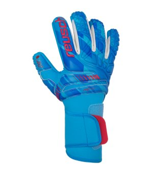reusch-pro-ax2-evolution-nc-torwarthandschuh-f121-equipment-torwarthandschuhe-3970459.jpg