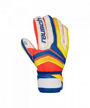 reusch-serathor-prime-g2-tw-handschuh-blau-f456-torwart-torspieler-keeper-equipment-gloves-herren-rasenplatz-3770935.jpg