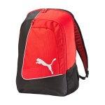 puma-evo-power-football-backpack-rucksack-f03-equipment-transport-strauraum-vereine-teamsport-073883.jpg