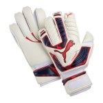 puma-evo-power-grip-1-torwarthandschuh-torheuterhandschuh-handschuh-goalkeeper-gloves-men-herren-maenner-weiss-f15-041054.jpg