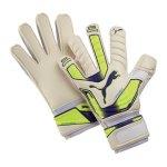 puma-evo-power-grip-2-rc-zwei-torwarthandschuh-goalkeeper-gloves-f04-weiss-gelb-lila-040982.jpg
