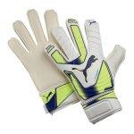 puma-evo-power-grip-3-rc-drei-torwarthandschuh-goalkeeper-gloves-f04-weiss-gelb-lila-040982.jpg
