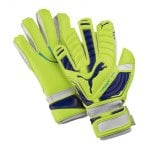 puma-evo-power-super-torwarthandschuh-goalkeeper-gloves-f06-gelb-lila-blau-041022.jpg