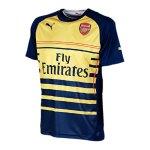 puma-fc-arsenal-london-gunners-prematch-jersey-shirt-mit-sponsor-2014-2015-f03-blau-gelb-746371.jpg